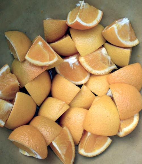 Orange slices provided some nourishment